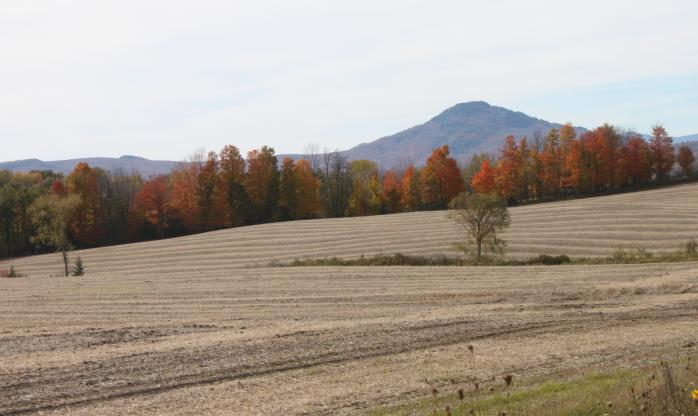 This fall has been a spectacular one for fall colours in the Eastern Townships. This photo was taken from Ogden, on the east side of Lake Memphremagog. Seen here: Owl's Head Mountain. (Photo - Matthew Farfan)