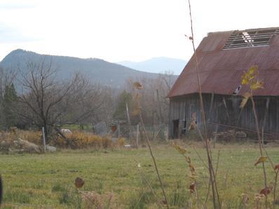 Ferme / Farm, Potton