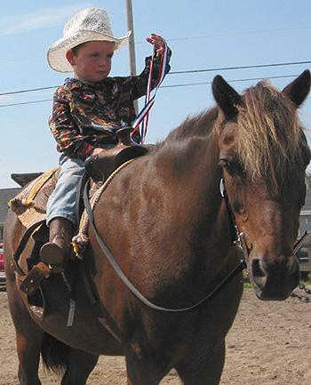 Jeune cavalier / Young horseman