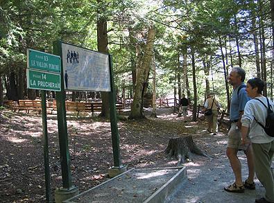 Le long des sentiers / Along the trail