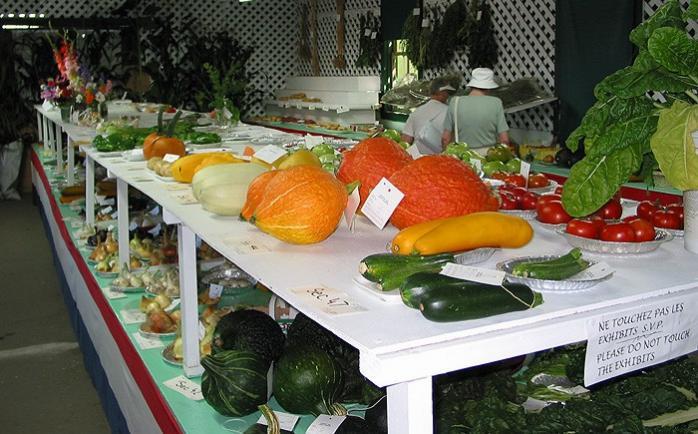 Concours de légumes / Vegie display