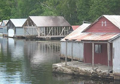 Ruisseau Tompkin / Tomkin's Creek