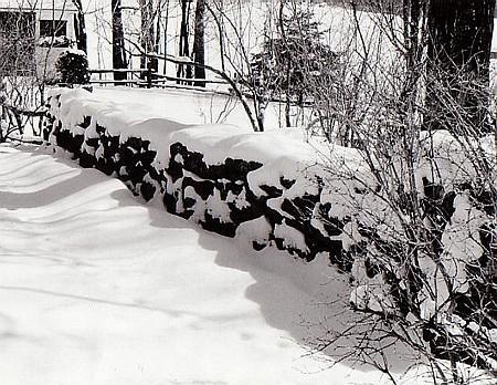 Muret enneigé / Snowy wall