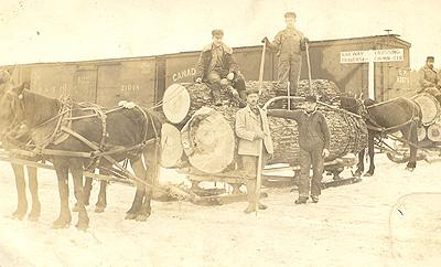 Exploitation forestière / Logging, Magog, 1913